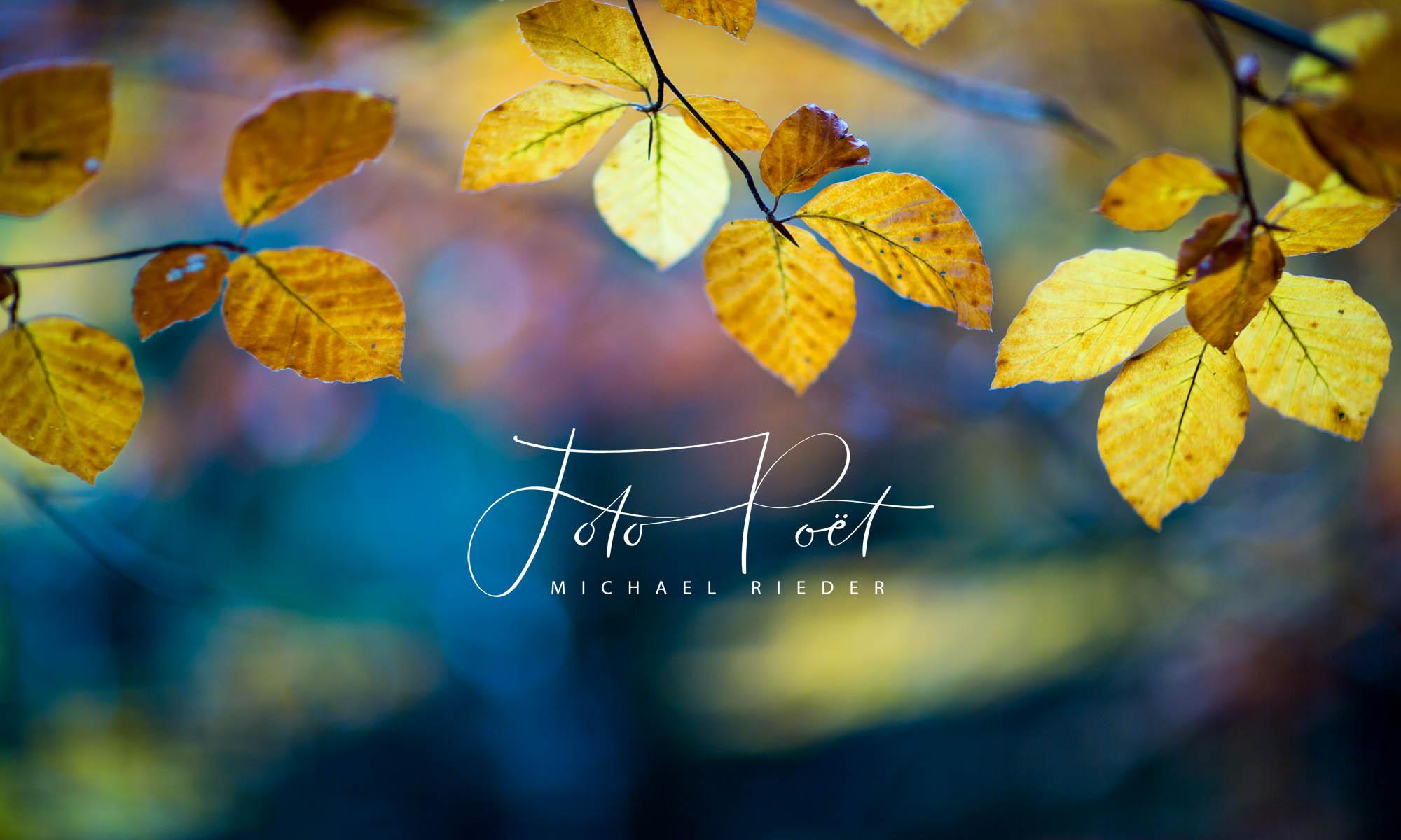 Foto-Poet